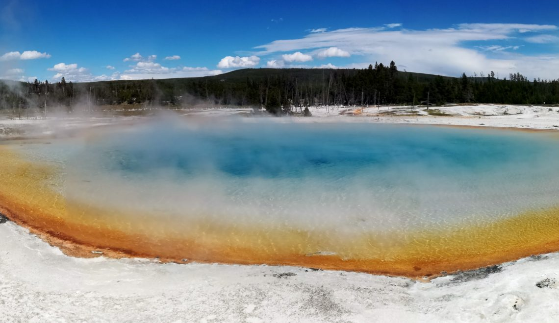 Yellowstone parc national wyoming idaho montana geysers bisons buffalos usa états unis arbres nature gran prismatic spring nature amazing picture