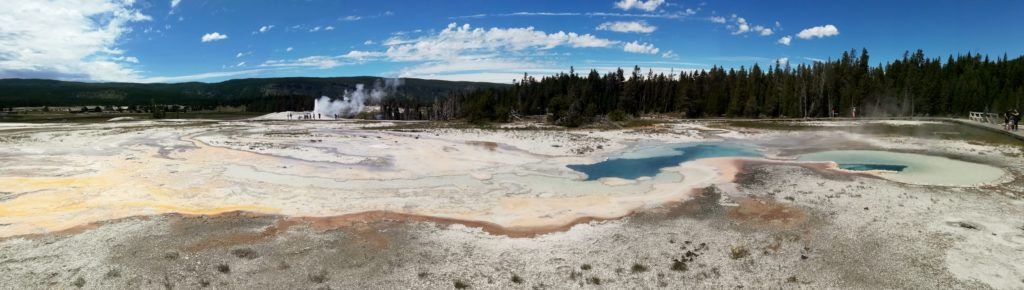 Yellowstone parc national wyoming idaho montana geysers bisons buffalos usa états unis arbres nature